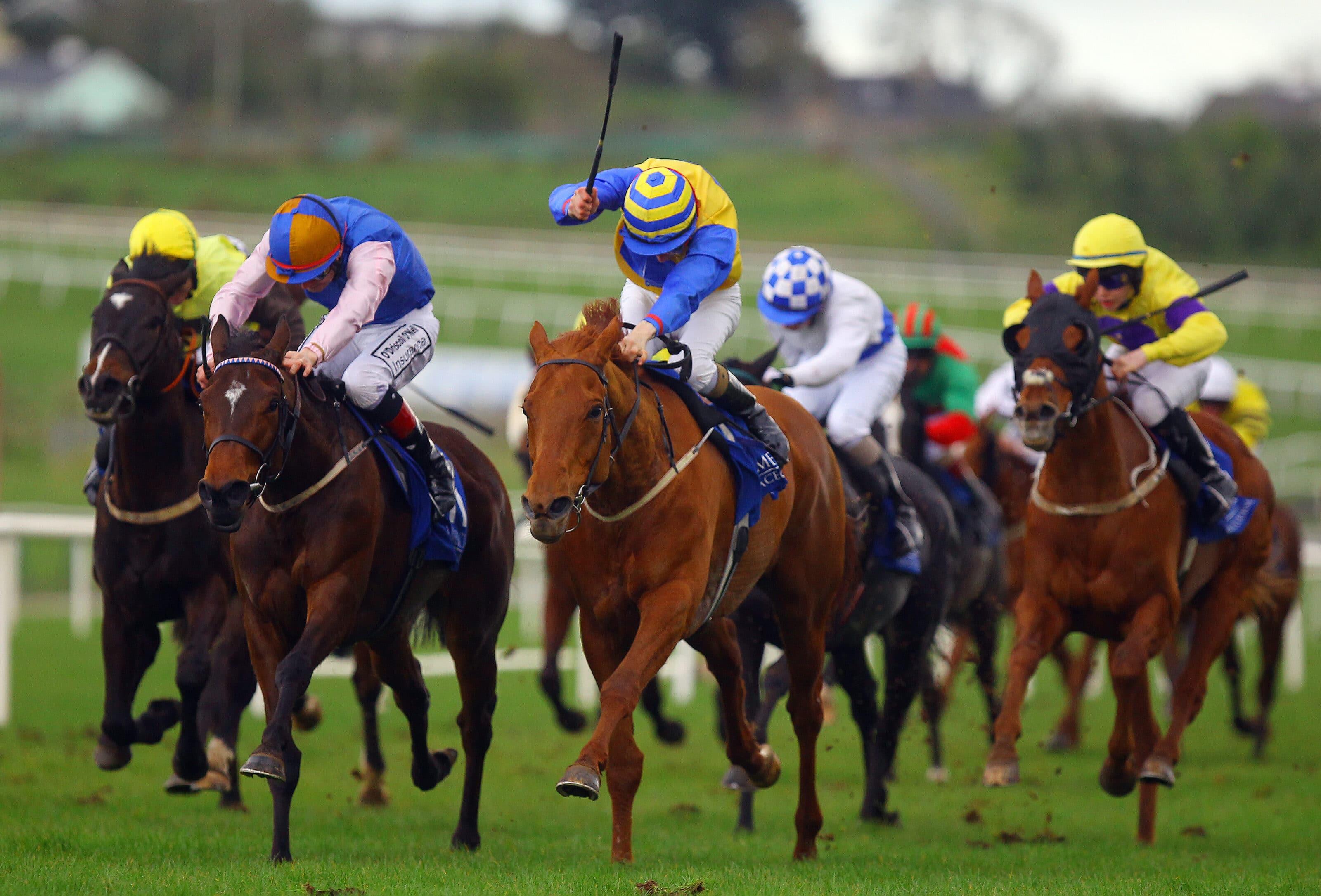 horse racing limerick