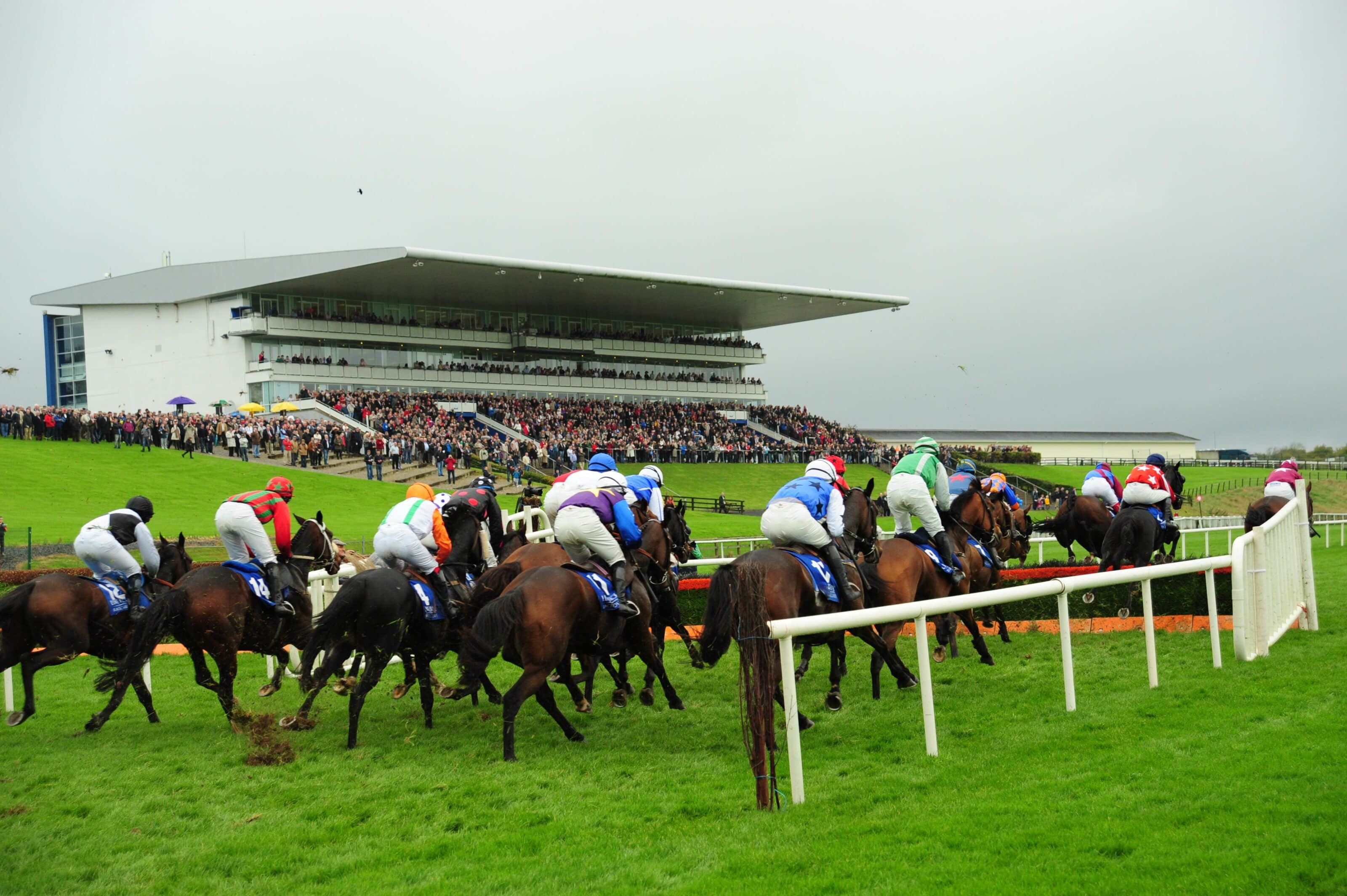 Limerick Racecourse - Something Different - Activity & Adventure ...