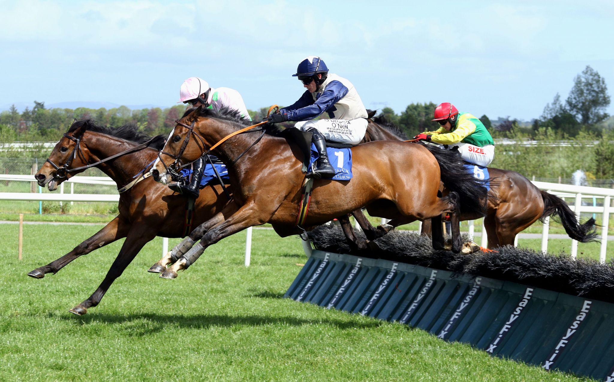 Limerick Racecourse horse racing