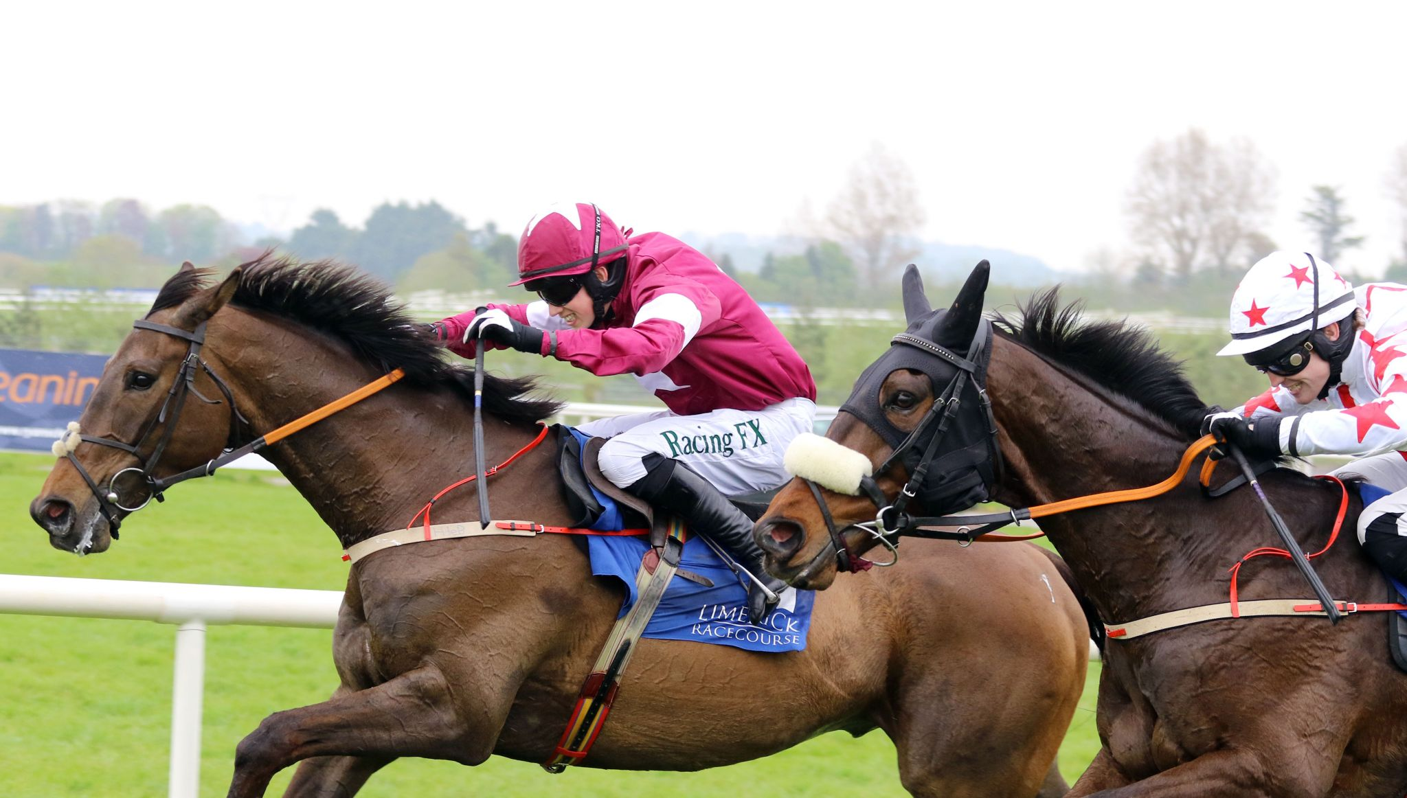 Horse Racing Balzac