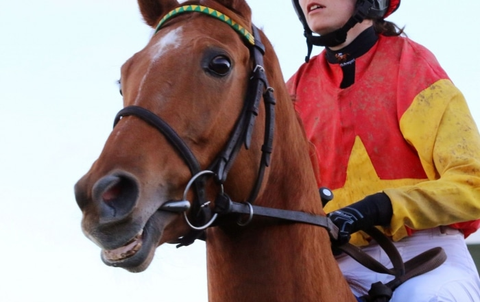 Free admission to Limerick Races