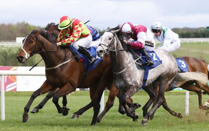 Limerick Races