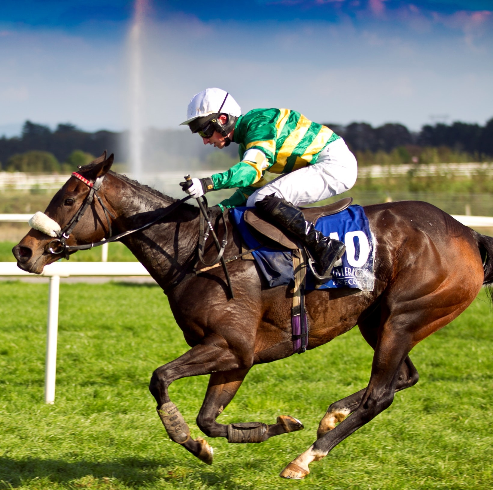 Home to Horse Racing in Limerick| Limerick Races