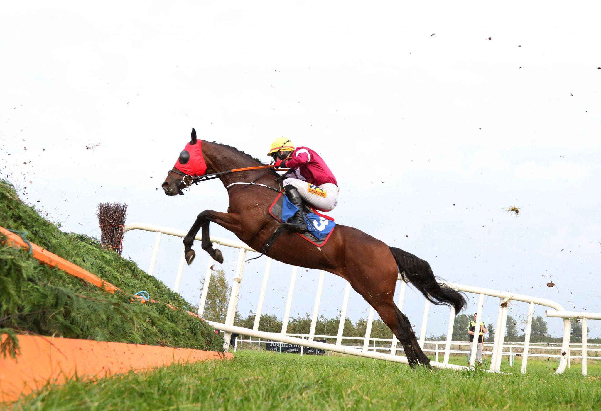 Www Limerickraces Ie News