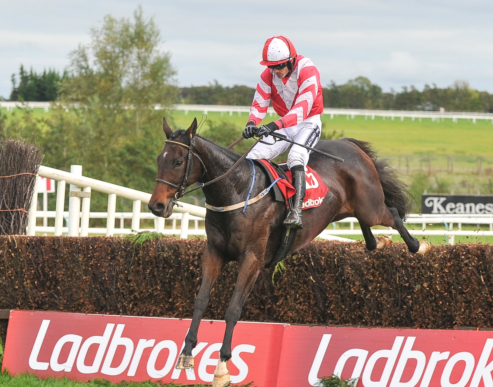 Ladbrokes Munster National