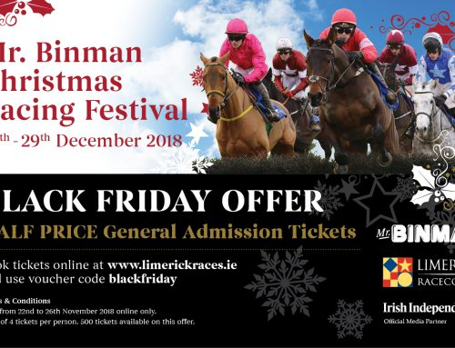 Black Friday Offer – Half Price tickets for any day of the Mr Binman Christmas Festival