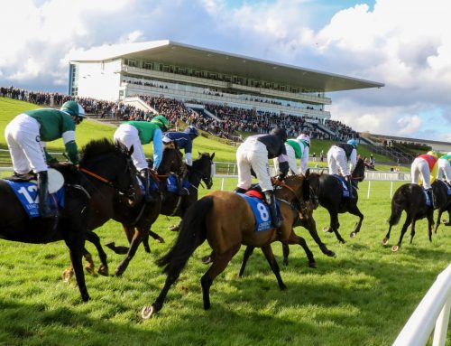 Horse racing cancelled at Limerick Racecourse